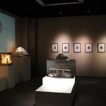 002 ALEXANDRE URIY - WASHINOSATO MUSEUM JAPAN_R